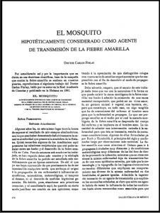 El mosquito hipotéticamente considerado como agente de transmisión de la fiebre amarilla