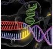 2016 06 12 - CRISPR