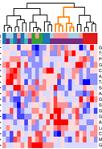 2019 04 15 B cancer proteome