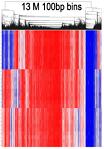 2019 07 03 Epigenetics