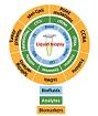 2020 05 12 Liquid biopsy